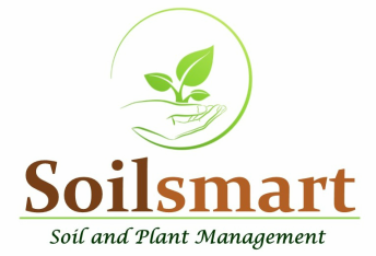 Sustainable Soil and Plant Management